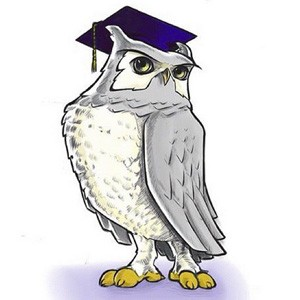 Sage the night owl wearing a grad cap