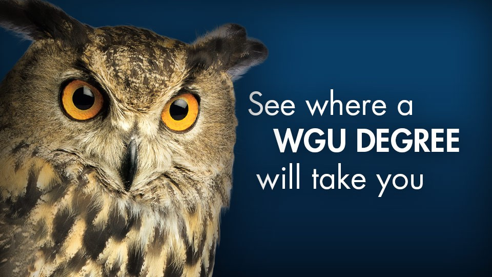 See where a WGU Degree will take you
